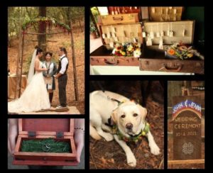 Rainbow Wedding in the Redwoods_5